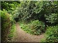 TQ4944 : Footpaths near Chiddingstone by Malc McDonald
