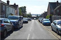 TQ5941 : Salisbury Rd by N Chadwick