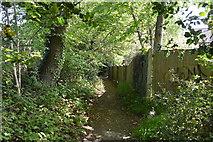 TQ5942 : Footpath off Hornbeam Avenue by N Chadwick
