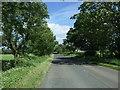 NZ1228 : Nettlebed Lane by JThomas