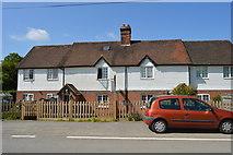 TQ6143 : Castle Hill Farm by N Chadwick