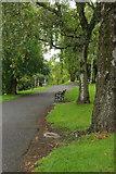 NS5766 : Kelvingrove Park by Stephen McKay