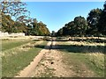 TQ5354 : The Greensand Way near Knole House, Sevenoaks by Roger Jones