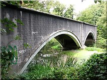 TG2209 : Dolphin Bridge over the River Wensum by Evelyn Simak