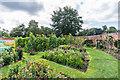 TQ1253 : Victorian kitchen garden, The Grange by Ian Capper