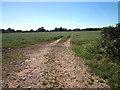 SJ5761 : Footpath to Eaton Lane by Jeff Buck