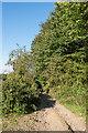 TQ1250 : Hogden Lane by Ian Capper