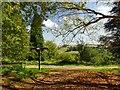 SU9941 : Footpath signpost in Winkworth Arboretum by Graham Hogg