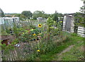 NZ2422 : Allotments, Heighington by pam fray