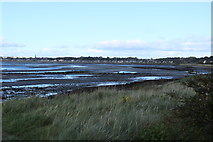 NS3119 : Shore at Doonfoot by Billy McCrorie