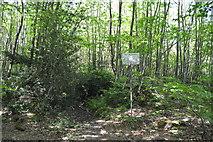 TQ6242 : Nature Reserve by N Chadwick