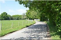 TQ6243 : Kent College driveway by N Chadwick