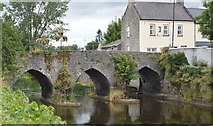 N8056 : Ireland's Oldest Bridge by N Chadwick