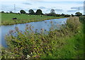 SD5037 : Lancaster Canal near Park Head by Mat Fascione