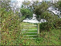SS8927 : Gate on footpath to Dulverton by Roger Cornfoot
