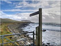 HU3909 : Coastal Path towards Sumburgh Head by David Dixon