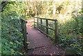 SU8034 : Footbridge in Deadwater Valley LNR, Bordon, Hampshire - 170918 by John P Reeves