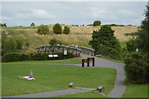 N8056 : Footbridge over the River Boyne by N Chadwick