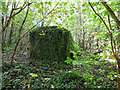 NS2875 : Remains of an old building by Thomas Nugent