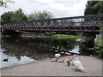 NY4624 : Temporary Bridge river Eamont by Steve Houldsworth