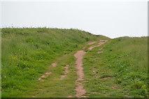 SX6643 : South West Coast Path, Long Stone by N Chadwick