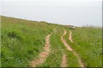 SX6642 : South West Coast Path by N Chadwick