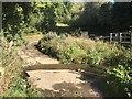 SX8295 : Frankford Farm Ford by John Walton