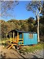 J5569 : Caravan, Mount Stewart : Week 40