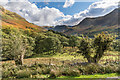 NY1717 : Up Buttermere by Ian Capper