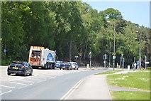 TQ6141 : Tonbridge Rd by N Chadwick