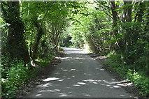 TQ6141 : Blackhurst Lane by N Chadwick