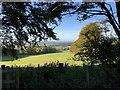 TQ0909 : Downland in Sunshine by Chris Thomas-Atkin