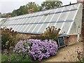 SJ8383 : Greenhouse, Quarry Bank Mill by John Darch