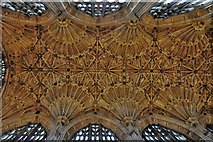 ST6316 : Sherborne Abbey: The magnificent nave roof by Michael Garlick