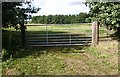 SU8037 : Gate into a sheep field by John P Reeves