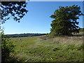 TQ1894 : The Green Belt north of Edgware by Marathon