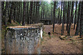 NJ2668 : Lossie Forest, its WW2 defences and Coast Artillery Gun Battery (10) by Mike Searle