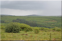 S0307 : Moorland by R668 by N Chadwick