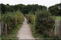 TQ4468 : Footpath to Petts Wood by Peter Trimming
