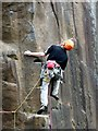 SK2479 : A climber in Bolehill Quarry by Graham Hogg