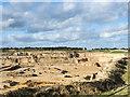 NZ3232 : Thrislington Quarry by Trevor Littlewood
