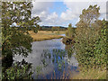 SN6862 : Pool on Cors Caron in Ceredigion by Roger  Kidd