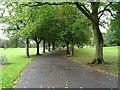 SJ9041 : Path through Queen's Park by Philip Halling