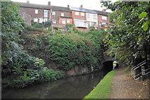 SO8480 : Cookley Tunnel by Bill Boaden