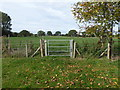 SJ4304 : Gate on the footpath by Jeremy Bolwell