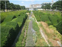 TQ4179 : Silvertown: Thames Barrier Park: The Green Dock (2) by Nigel Cox