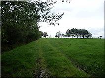 NY7213 : Farm track along a field boundary, Bleatarn Common by Christine Johnstone