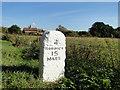 TG0002 : Fancy diamond brickwork on a cottage 15 miles from Norwich by Adrian S Pye