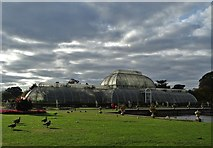 TQ1876 : A view of The Palm House, Kew Gardens by Neil Theasby