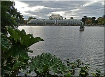 TQ1876 : Another view of The Palm House at Kew Gardens by Neil Theasby